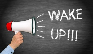 43953624 - wake up !