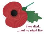 16031407 - remembrance poppy card